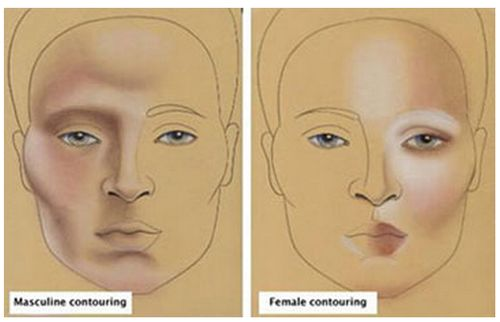 How to contour and highlight your face! Here is an image I found on where natural highlights are on men and women, a perfect reference for beginning drag kings and queens like me.