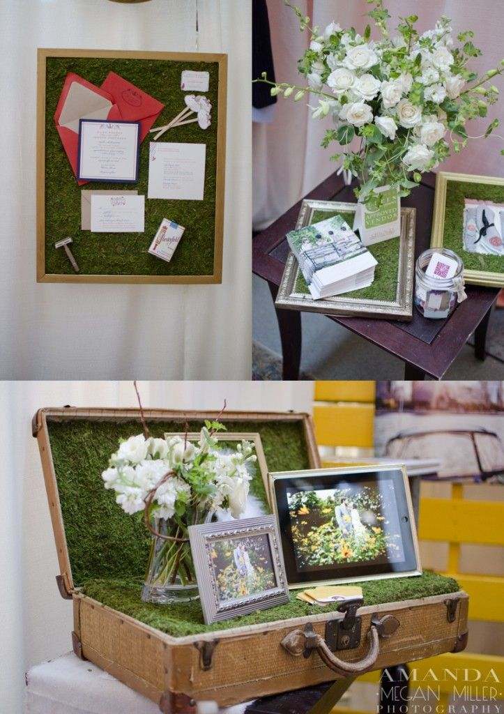 moss-Display photos in suitcases, lunch boxes, hat boxes etc