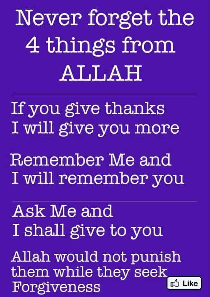 Allah ♡ you                                                                                                                                                                                 More