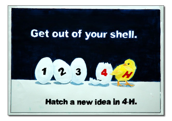 get out of your shell