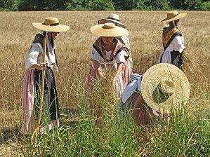 Provence-costume-provençal-danse