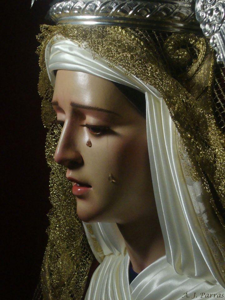 los católicos somos criticados por venerar a la virgen María, solo porque sabemos ser agradecidos, cada lágrima y cada dolor que atravezó su corazón bien vale agradecer, honor a quien honor merece!!!!!!!!!!!!!!!