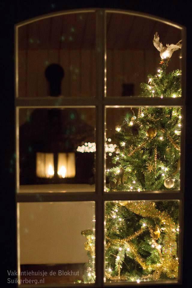 Kerst doorkijkje Vakantiehuisje De Blokhut (2-5 personen) www.suikerberg.nl