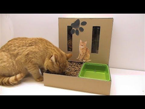 DIY Cat Food Dispenser from Cardboard at Home - YouTube