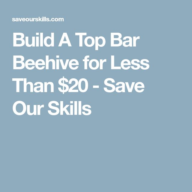 Build A Top Bar Beehive for Less Than $20 - Save Our Skills