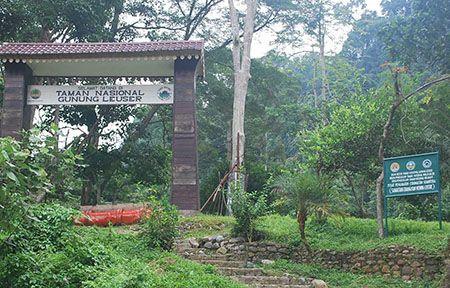 Taman Nasional Gunung Leuser Sumatera Utara
