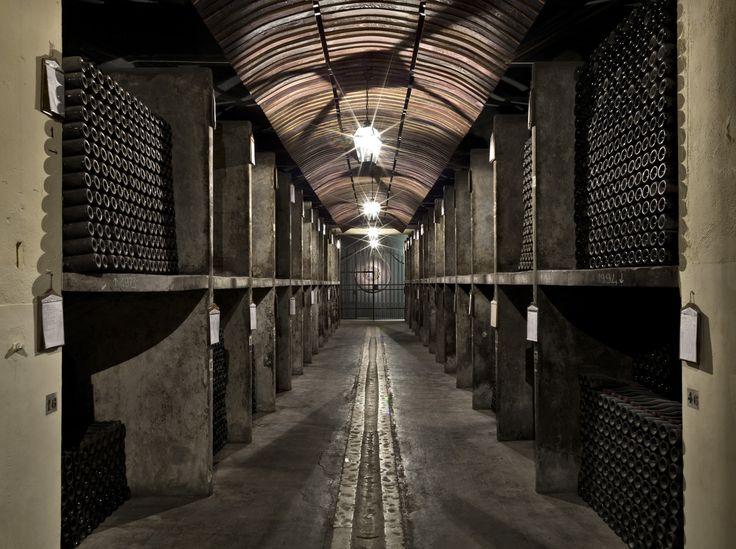 La cantina storica Bertani: dove è custodito l'Amarone Classico Bertani