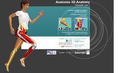 Anatomie 3D et Anatom jeu sérieux  