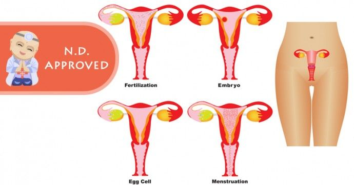 8 Best Surprising Things That Affect Fertility In Women -2570