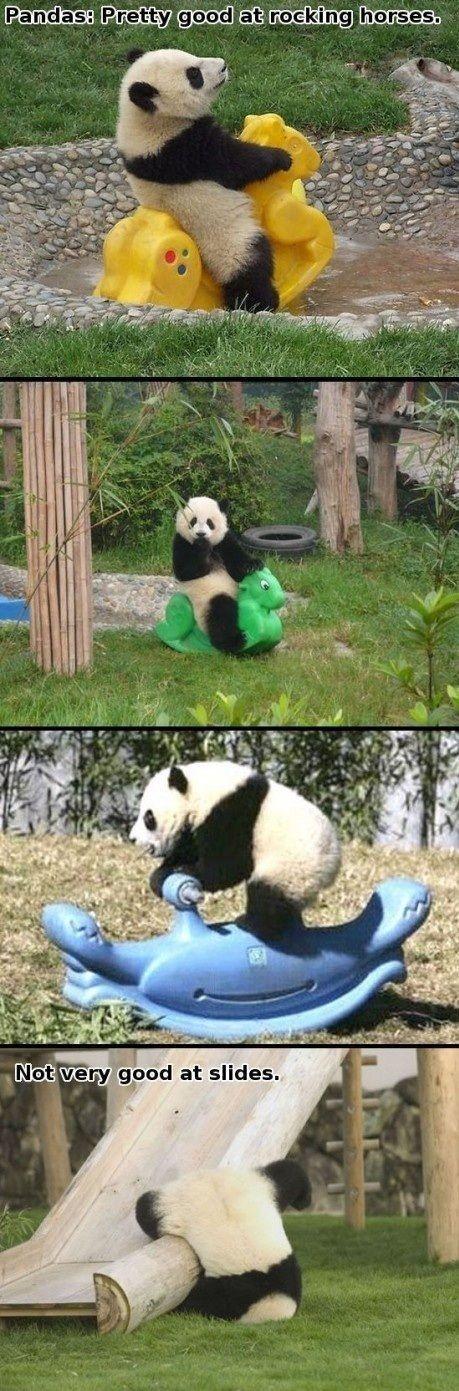 Funny Pandas' Playtime
