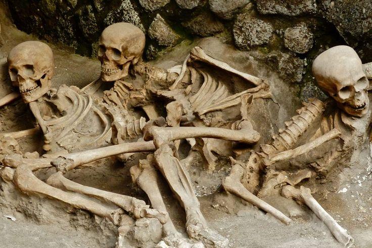 Pompeii hero Pliny the elder may have been found.
