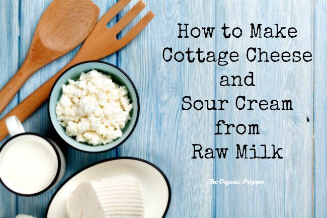 How to Make Cottage Cheese and Sour Cream from Raw Milk | The Organic Prepper