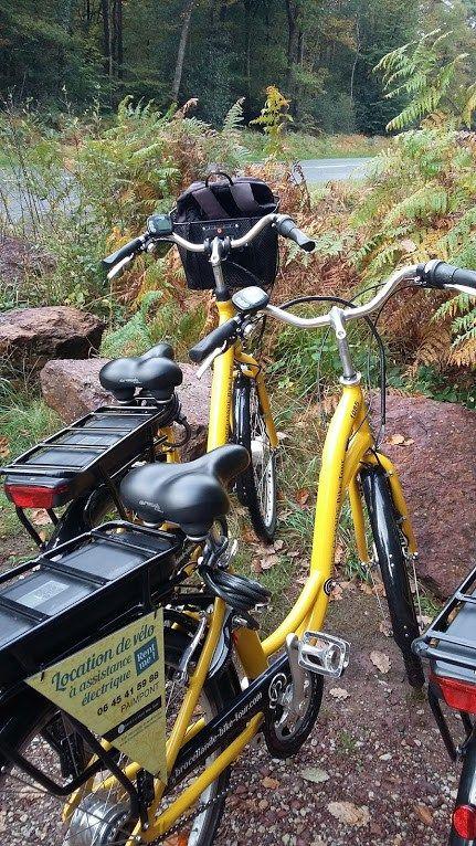 Découvrir la forêt de Brocéliande en vélo électrique
