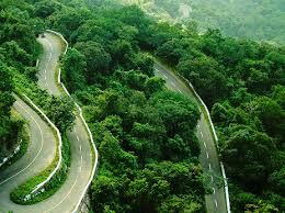 Wayanad a rising name in the kerala tourism best ...