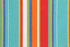 Richloom Cove Stripe Printed Polyester Outdoor Fabric in Fiesta $8.95 per yard