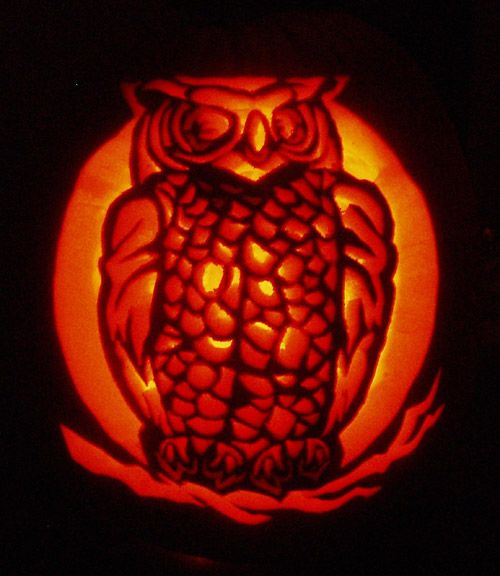 Pumpkin Carving Ideas Science: 17 Best Images About Pumpkin Carving On Pinterest