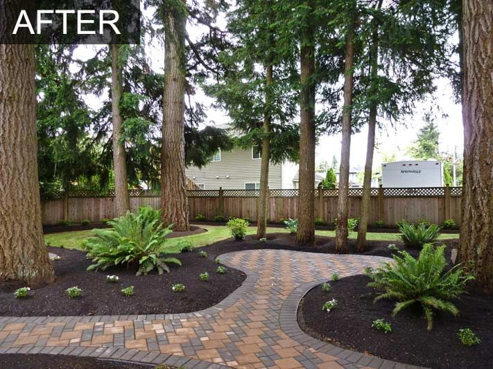 Backyard Makeover With Irrigation System For Home In Langley Bc Besties One Day Pinterest And