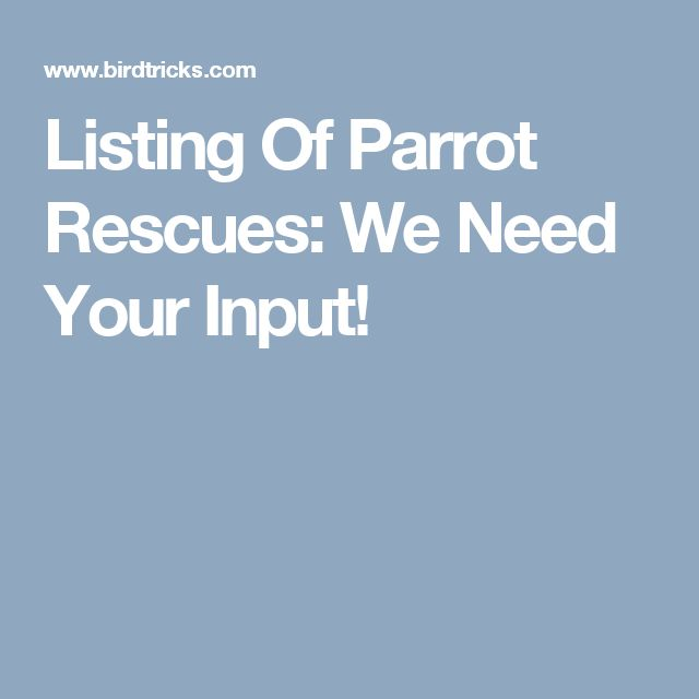 Listing Of Parrot Rescues: We Need Your Input!