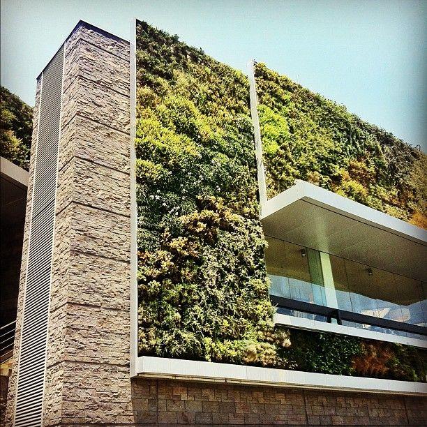 Instagram fachada verde