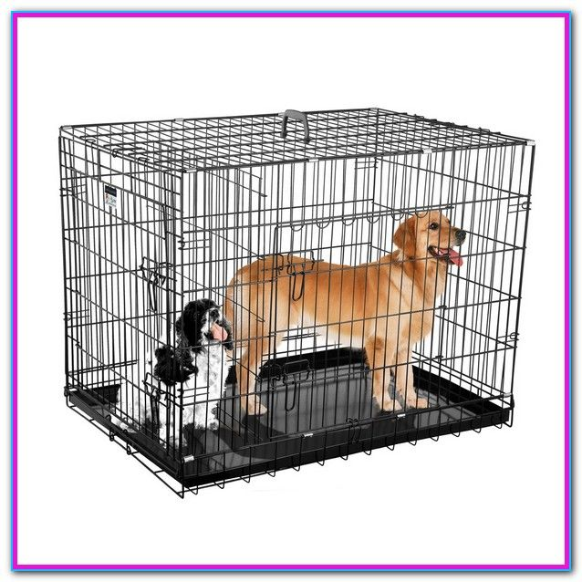Where To Get Cheap Dog Cages Dog Cages Dog Crate Cheap Dog Cages