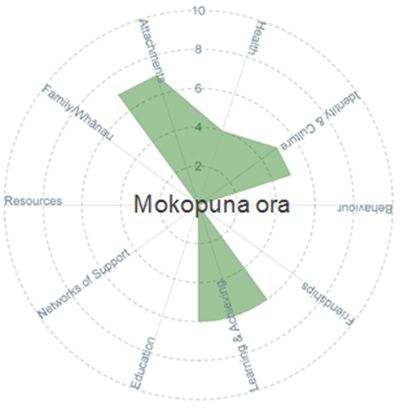 Mokopuna Ora - circle graph