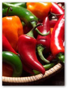 How to grow jalapeño peppers.