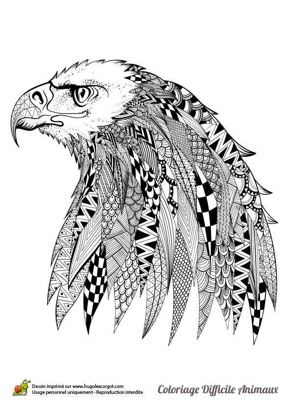 0e89e98831e37c50661ab3798a0bd43f  drawing birds mandala art together with detailed coloring pages for adults coloring pages animals on eagle mandala coloring pages as well as coloring pages eagle on eagle mandala coloring pages further printable coloring page monkey head animal coloring pages on eagle mandala coloring pages furthermore the eagle mandala coloring pages wood burning projects and on eagle mandala coloring pages