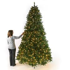 9FT 2.7M PRE LIT GREEN BAYBURY SPRUCE ARTIFICIAL CHRISTMAS XMAS TREE DECORATION