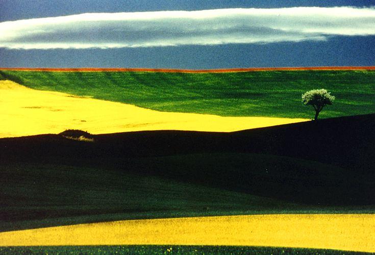 Franco Fontana, Paesaggio Immaginario, 1995. Galleria civica di Modena, Raccolta della fotografia. #Earthday