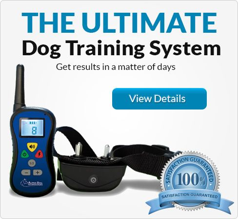 Ultimate Dog Training Collar