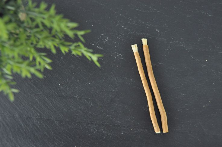 The miswak is a natural toothbrush The oldest method of oral hygiene is benefici…