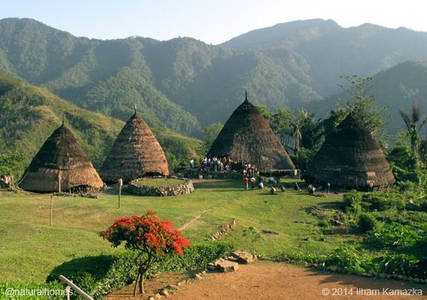 These rattan thatched homes are the vernacular architecture of Wae Rebo Village on Flores Island in Indonesia. More, including video, at www.naturalhomes.org/naturalhomes3rd.htm#rattan