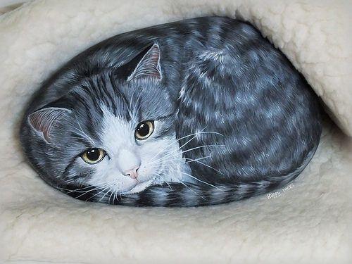 Pixel - Happy rocks www.galets-peints.fr ~ Get Ozzi #Cat #Magazine - All about #cats! >> http://OzziCat.com.au