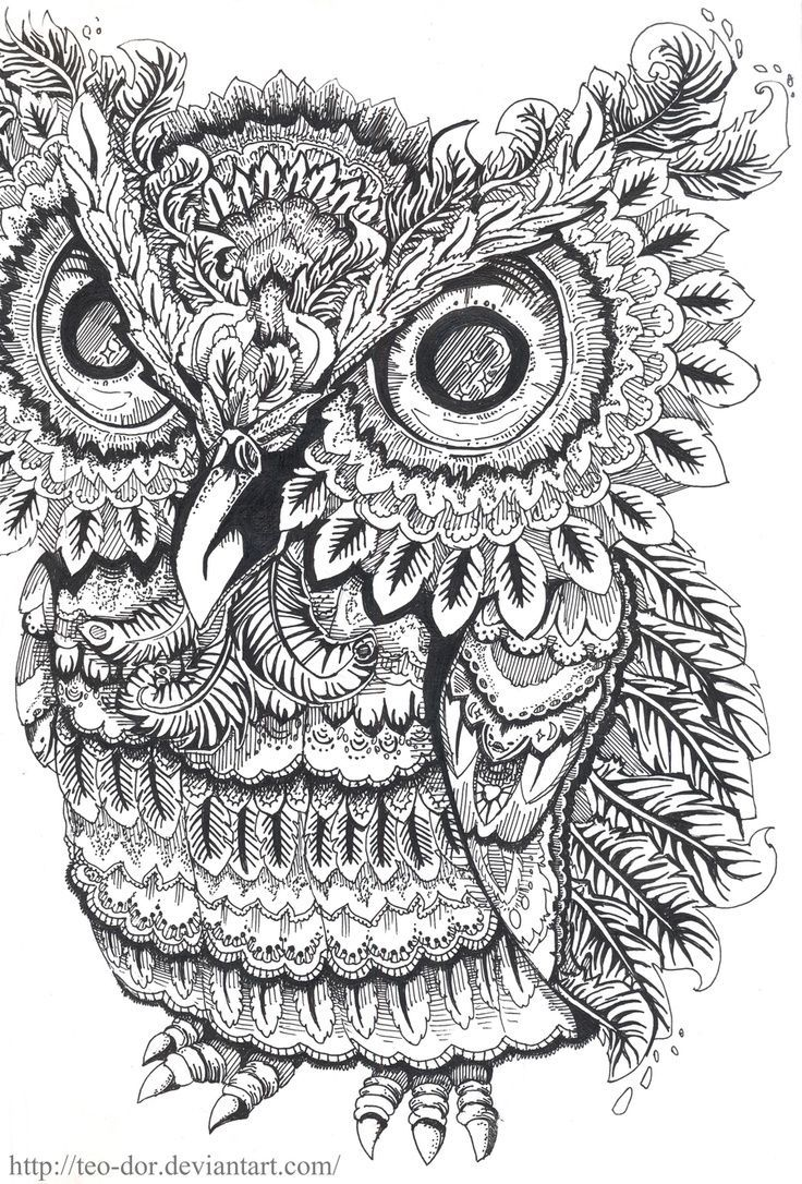 Therapeutic coloring pages for adults - Owl Coloring Pages Colouring Adult Detailed Advanced Printable Kleuren Voor