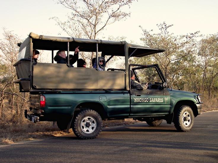 Another Open Safari Vehicle.