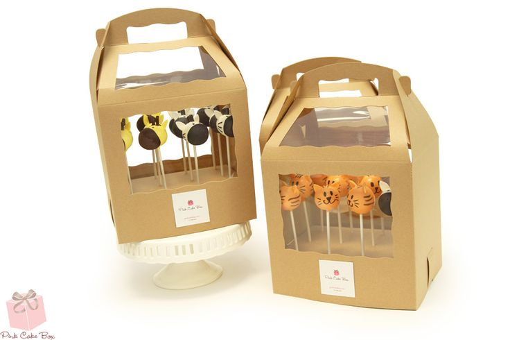 Animal Cake Pops with carrying cases!