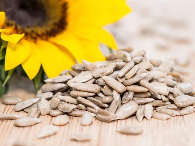 Diverse sono le proprietà benefiche, dimagranti e le controindicazioni dei semi di girasole. Quali? Scopriamo di più in merito.