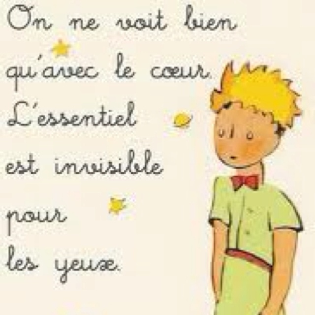 Little Prince Quotes In French Quotesgram: 23 Best The Little Prince Images On Pinterest