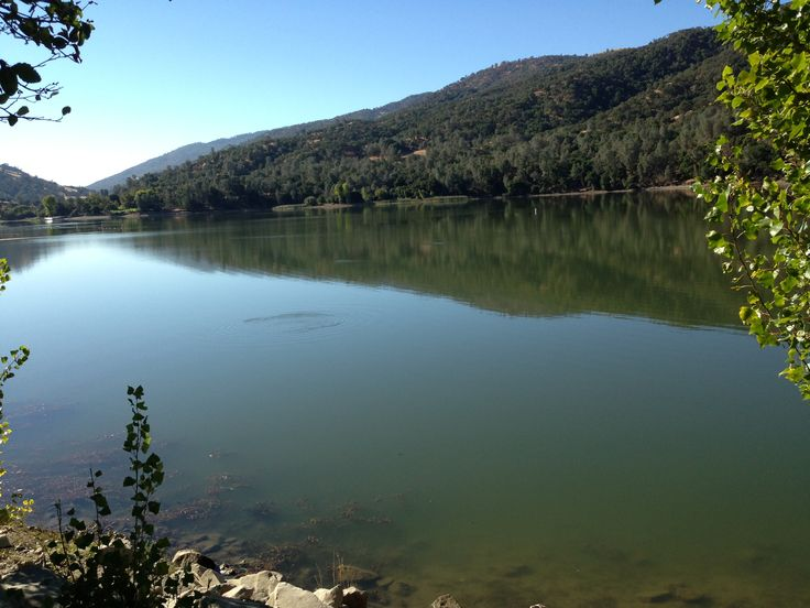 111 best images about livermore ca home town on pinterest for Lake del valle fishing report