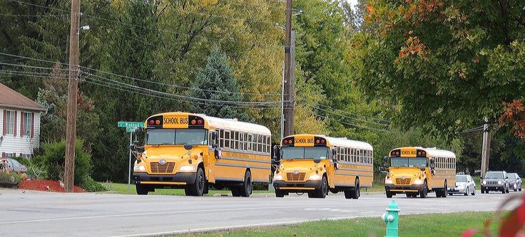 """""""Hurry Here Comes The School Buses"""""""