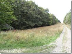 Wildnis-Trail, die vierte Etappe