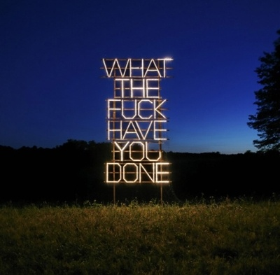 What the F*ck have YOU done!: Artists, Fucking, Lights Installations, Quotes, Neon Signs, Sometimes I Wonder, Wtf, Messages, Fields