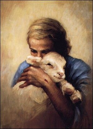 "❤️️️Lambs ~ ""I am the Good Shepherd.  The Good Shepherd lays  down His life for His sheep."""