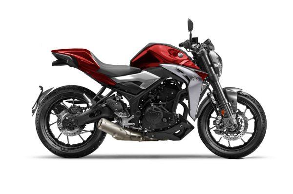 Modifikasi Yamaha MT25 Ala Ducati Monster