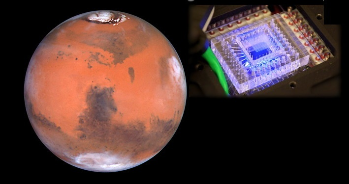Life in Space: Genome Hunters Go After Martian DNA To Find Extraterrestrial Life (using Deep Sequencing Methods)