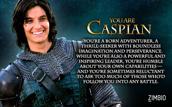 First question: why did they have to use movie images?  Second question: is this assessment accurate?  Well, the born-adventurer-thrill-seeker isn't, but the rest is.  Though I think I'm more like a combination of Peter, Susan, Puddleglum, and possibly Edmund.  @gingersnap0265; @enkie2254; @bekahhopephoto; @sarah31grace, your thoughts?