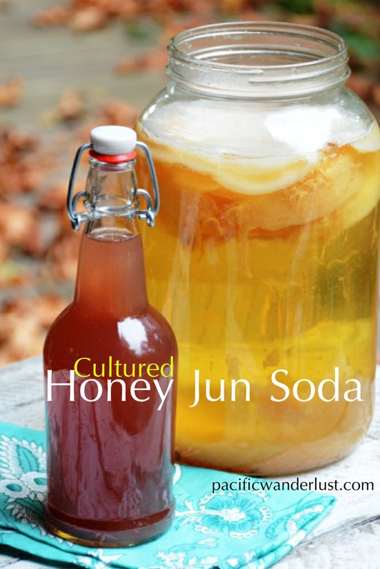 My Love Affair With Honey Jun Soda. Make your own DIY Probiotic Soda Pop! Over the past few months I have developed a new kindred friendship with Honey Jun Soda, also called Jun Tea. My new Best Fr...