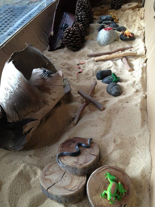 Reptile park from Puzzles Family Day Care. Adding different materials to a traditional sand table for exploring and pretend play. #bringingtheoutdoorsinlooseparts