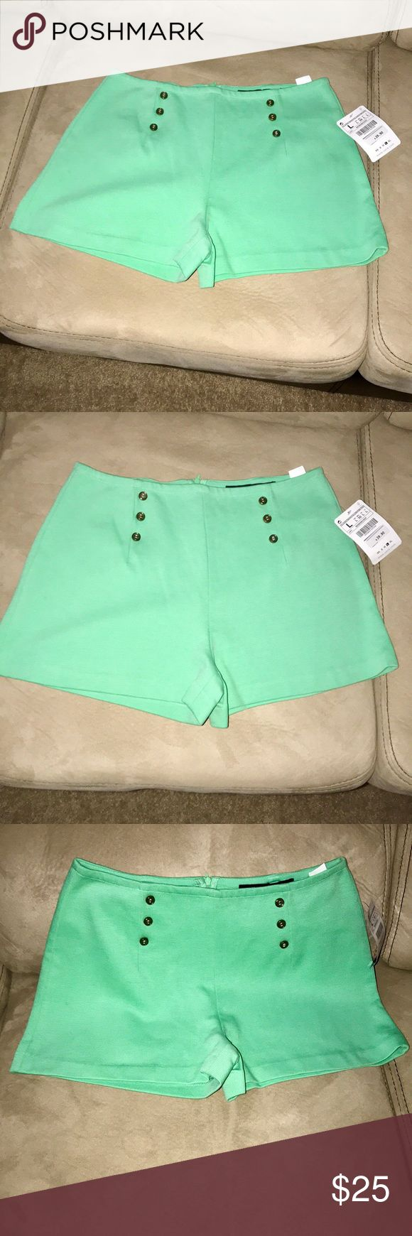 Zara Mint Green Shorts Zara Mint Green Shorts | Front button detail Zara Shorts