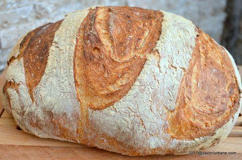 """Paine de casa neframantata reteta rapida. Zisa si """"painea lenesului"""", aceasta paine fara framantare este coapta in oala cu capac. Painea este pufoasa, coaja"""
